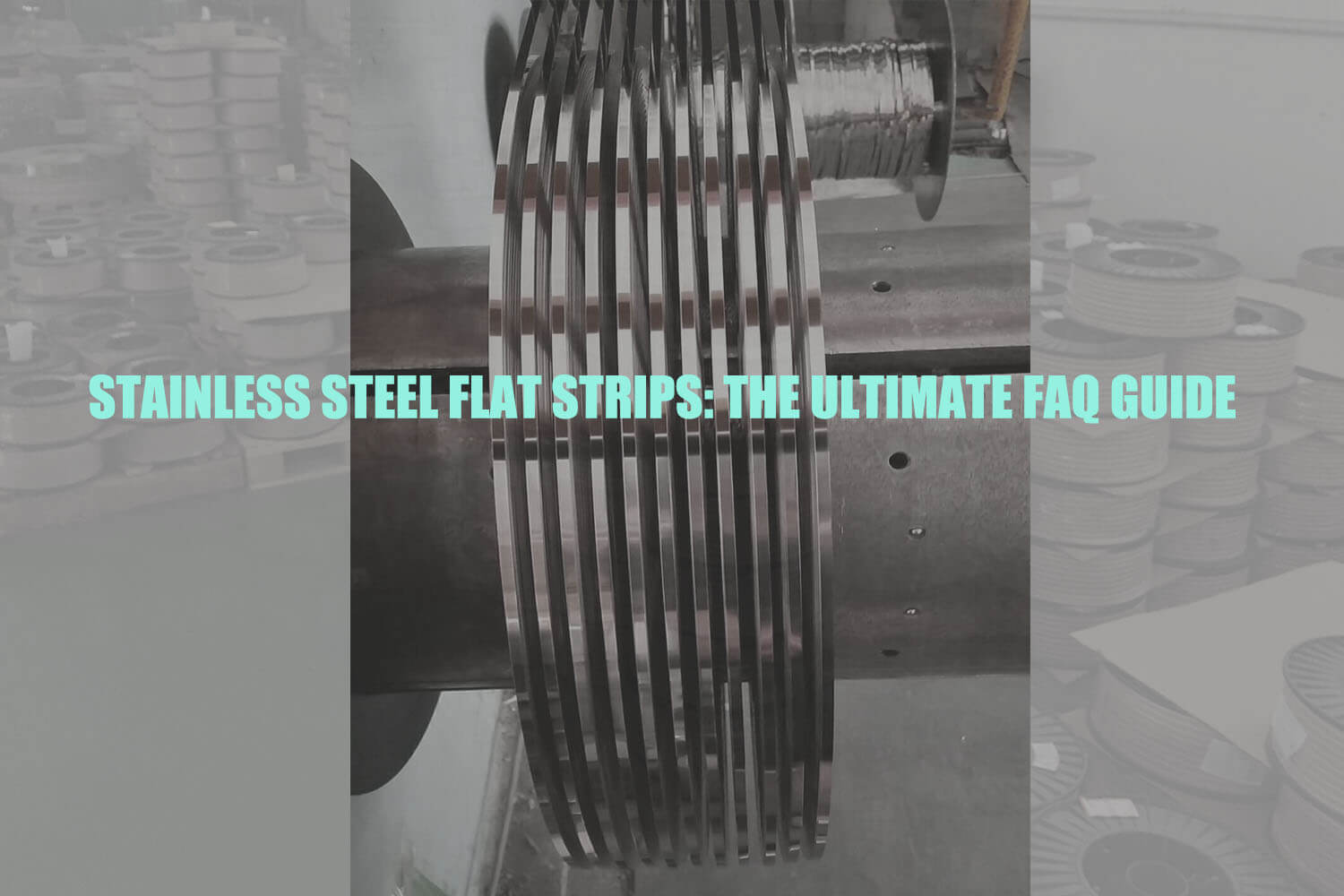 stainless-steel-flat-strips